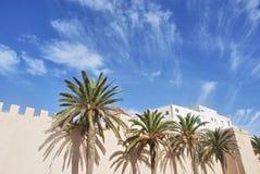 Pared del ` s de Medina con las palmeras Imágenes de archivo libres de regalías