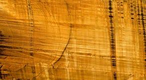 Pared del `s de reyes Canyon Foto de archivo libre de regalías