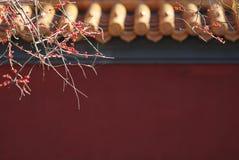Pared del templo de Confucius Imagen de archivo libre de regalías