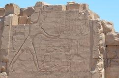 Pared del templo de Karnak foto de archivo