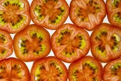 Pared del tomate de cereza Imágenes de archivo libres de regalías