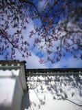 Pared en parque chino foto de archivo libre de regalías