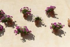 Pared española con las flores Andalucía foto de archivo