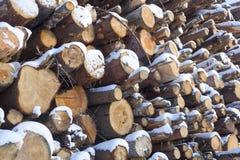 Pared hecha de la madera apilada Imagen de archivo libre de regalías