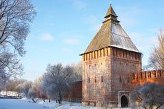 Pared hermosa del castillo Foto de archivo libre de regalías