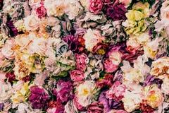 Pared hermosa y pintoresca hecha de las flores blancas, rojas, amarillas y púrpuras Foto de archivo