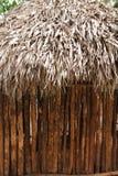Pared maya de la azotea de la casa de la selva mexicana del palapa de la choza Imagen de archivo