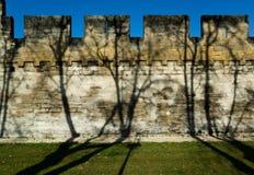 Pared medieval del terraplén Imagen de archivo