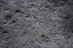 Pared porosa gris Foto de archivo