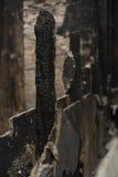 Pared quemada Imagen de archivo libre de regalías