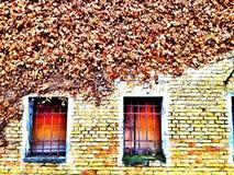 Pared resistida y ventanas atrincheradas viejas Fotos de archivo