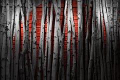 Pared roja Imagen de archivo libre de regalías