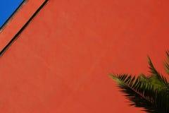 Pared roja con el cielo y la palma Fotografía de archivo libre de regalías