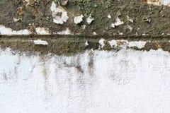 Pared sucia vieja con el molde Imagenes de archivo