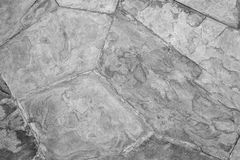 Pared texturizada gris Fotografía de archivo libre de regalías