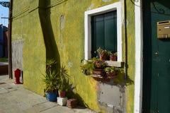 pared Verde-coloreada en la isla de Burano Fotografía de archivo libre de regalías