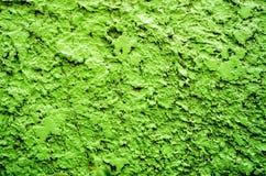 Pared verde del fondo de la textura Imagen de archivo
