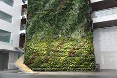 Pared verde en el edificio de oficinas Fotos de archivo