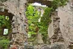 pared vieja con una ventana y las plantas del agujero imágenes de archivo libres de regalías