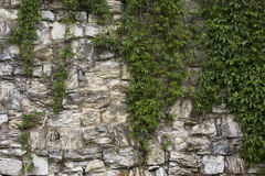 Pared vieja de piedra con el brezo Textura de la pared de piedra Bloques de la roca en ladrillo medieval viejo Imágenes de archivo libres de regalías