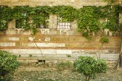 Pared vieja de un edificio con cuatro ventanas y parrillas Fotos de archivo libres de regalías