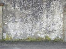 Pared vieja del cemento Imagenes de archivo