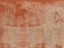 Pared vieja del cemento de la grieta roja de la tortuga imagenes de archivo