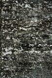Pared vieja. Fondo de la textura Foto de archivo libre de regalías