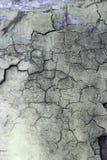 Pared vieja. Textura Imagenes de archivo
