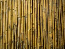 Pared y cerca de bambú secas Imagen de archivo