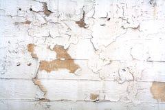 A parede Imagens de Stock Royalty Free