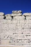 Parede 186 do relevo em Egipto Fotografia de Stock