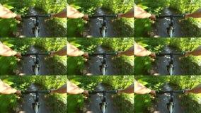Parede abstrata da animação Ciclismo da pessoa na floresta do verde do passeio da bicicleta video estoque