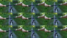 Parede abstrata da animação Ciclismo da pessoa na floresta do verde do passeio da bicicleta filme