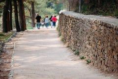 Parede antiga do trajeto pavimentada com os tijolos no parque imagem de stock royalty free