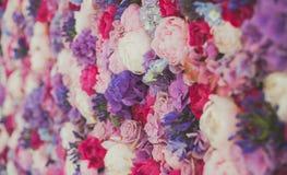Parede bonita feita de flores roxas violetas vermelhas, rosas, tulipas, imprensa-parede, fundo fotografia de stock royalty free