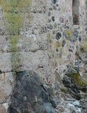 Parede córnico em St Ives Imagens de Stock Royalty Free