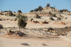 Parede chinesa em Mungo National Park Imagens de Stock