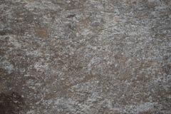 Parede cinzenta concreta do fundo da textura do cimento velho fotos de stock royalty free