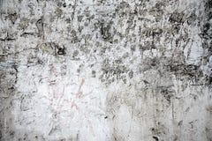 Parede cinzenta da pintura com pontos pretos Imagens de Stock Royalty Free