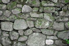 Parede cinzenta e verde da rocha Imagem de Stock