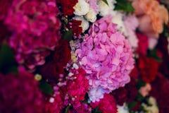 Parede com variedade de flores, rosas, cravos, hortênsias fotos de stock