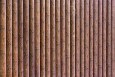 Parede da amostra da casa com casa de log Imagens de Stock Royalty Free