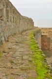Parede da fortaleza Foto de Stock Royalty Free