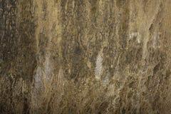 Parede da pedra calcária fotos de stock