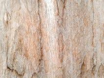 parede da prancha Imagem de Stock