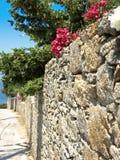 Parede da rocha com as flores em Mykonos foto de stock royalty free