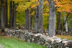 Parede da rocha, Nova Inglaterra fotos de stock
