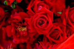 Parede das rosas Foto de Stock