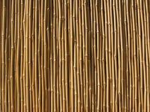 Parede de bambu Fotos de Stock Royalty Free